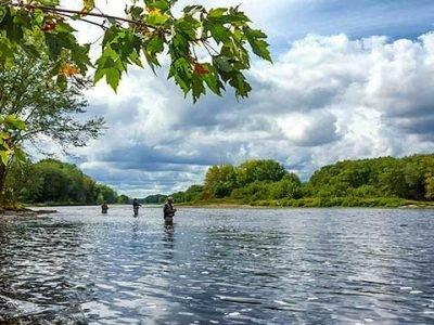 Renous sur la riviere