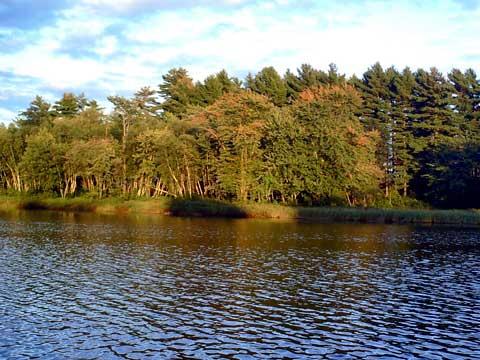 Renous riviere peche